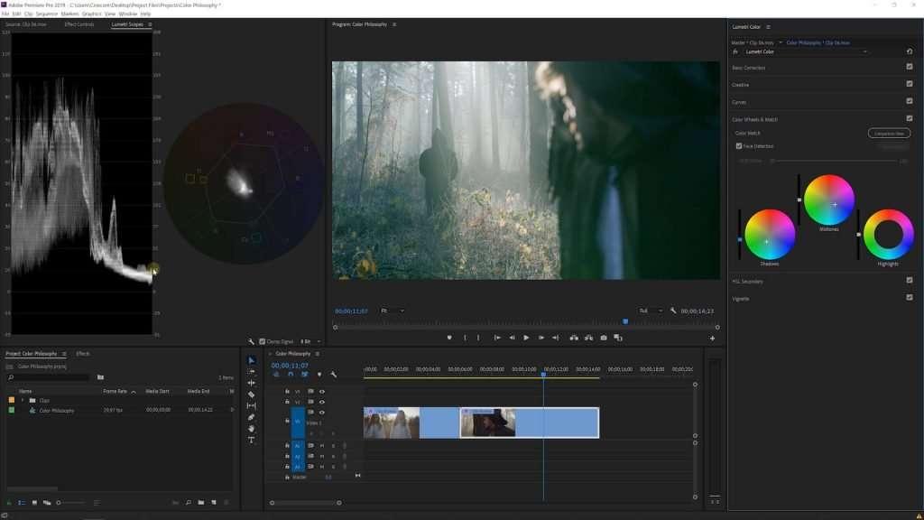 Colors Wheels in Premiere Pro Lumetri