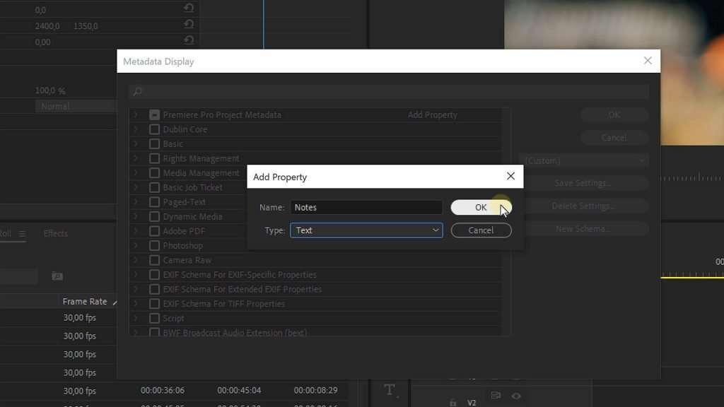 Metadata in Premiere Pro